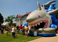 Inflatable Shark Slide for web