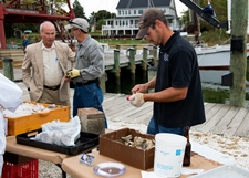 Shucking oysters for website.jpg